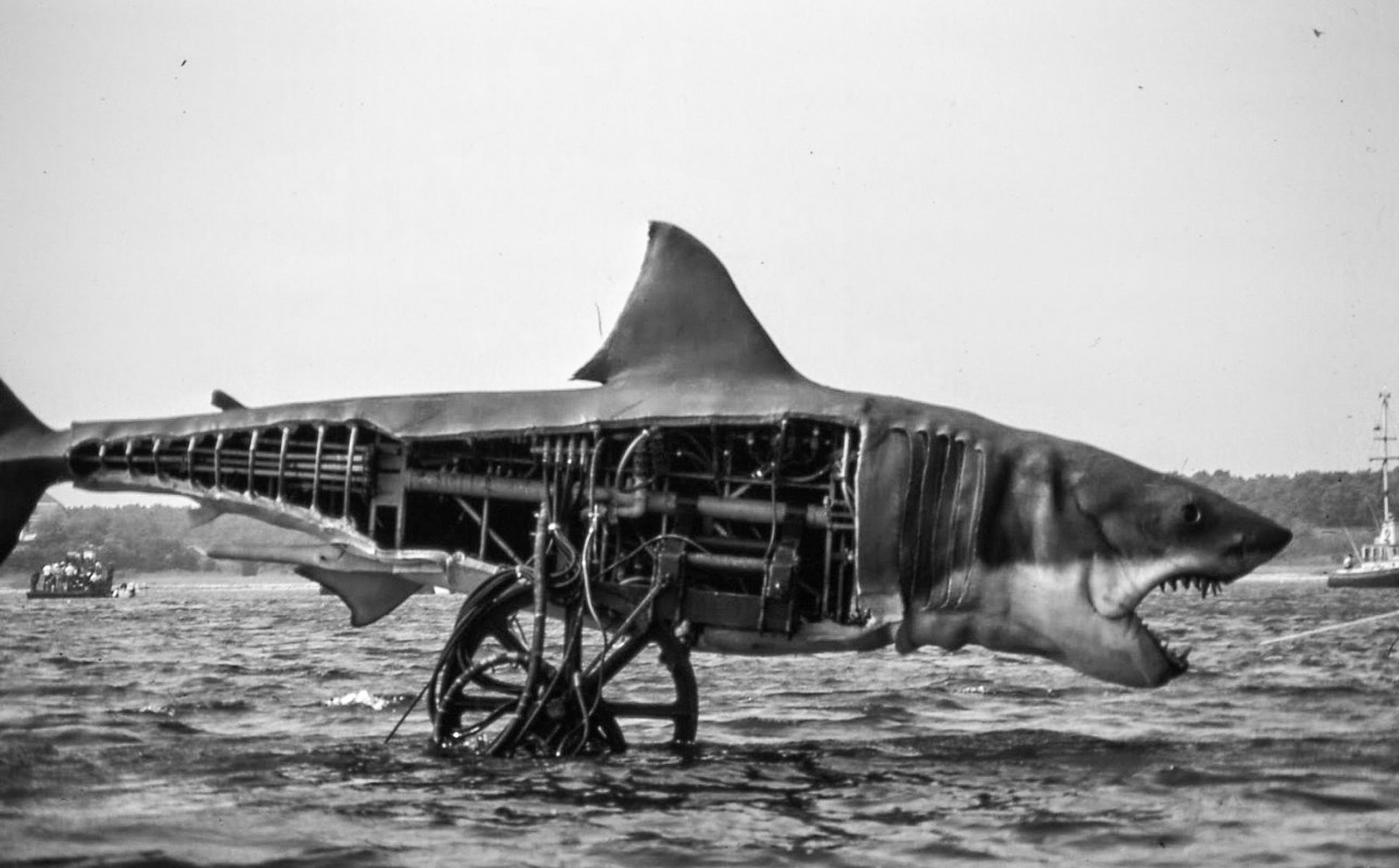 The Shark Model from Jaws